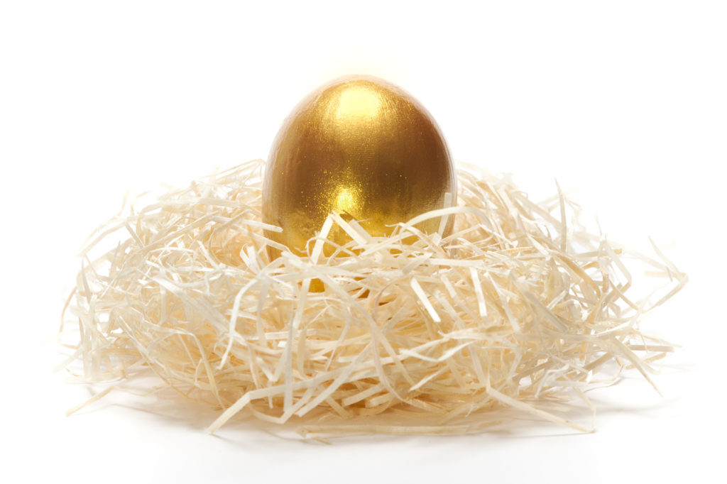 Golden egg in nest on a white backgound as a concept of unique